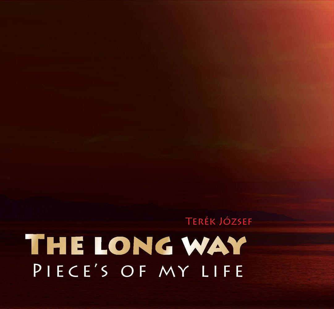 The long way - Pieces of my life-100%x160
